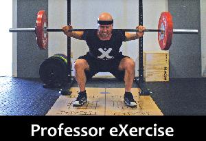 Prof-eX-web